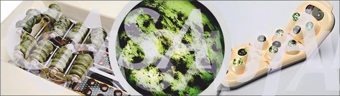 piatra autentica jad